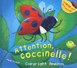Attention, coccinelle !
